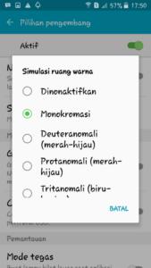 merubah Tampilan Monokrom di Android