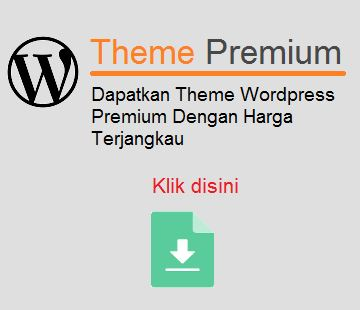 theme wordpress premium
